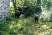 Giresun Adası temizleniyor