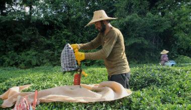 Yerli işçi kaliteyi arttırdı